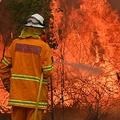 豪シドニーから北へ350キロ離れた町タリーで、消火活動に当たる消防隊員ら(2019年11月9日撮影)。(c)PETER PARKS / AFP