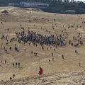 「ポケモンGO」のイベントで鳥取砂丘の生態系に負荷か