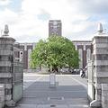 世界大学ランク 上位200校に日本は東京大学、京都大学の2校のみ