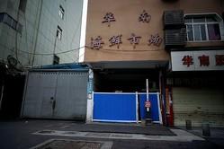 WHOコロナ発生源調査は1カ月間、中国側の「制約なし」