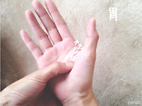 胃痛 対処 法 即効 性 胃痛による突然の痛みを和らげる対処法と痛くならないための予防法を...