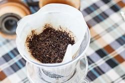 使用済みのコーヒーで土壌消毒技術を開発 農家悩ませる青枯病対策に 農研機構