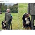 大統領会見中に犬が甘噛み(画像は『President Michael D. Higgins 2021年5月3日付Instagram「Behind the scenes at Áras an Uachtaráin.」』のスクリーンショット)
