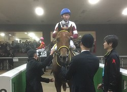 土曜東京6R新馬はオーヴァルエースが9馬身差の圧勝