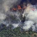 ブラジル北西部ロンドニア州で、アマゾン森林火災により立ち上る煙。航空機から撮影(2019年8月23日撮影)。(c)Carl DE SOUZA / AFP