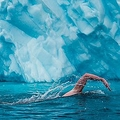 南極圏にあるマイナス3度の海を泳ぐとどうなる 経験者「燃やされるよう」