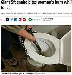 便器の中に体長1.6メートルのニシキヘビ発見(画像は『Mirror 2019年1月25日付「Giant 5ft snake bites woman's bum while she's sitting on toilet」(Image: JASMINE ZELENY)』のスクリーンショット)