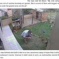 庭でゴキブリ退治をする男性(画像は『Bored Panda 2019年10月24日付「Man Accidentally Blows Up His Entire Backyard While Trying To Get Rid Of Cockroaches」』のスクリーンショット)