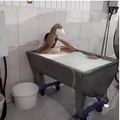 牛乳の入った容器で入浴を楽しむ男(画像は『Hürriyet Daily News 2020年11月6日付「Worker's milk bath causes dairy plant to close down」』のスクリーンショット)