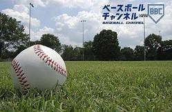 【神宮大会2019トーナメント表】第50回記念明治神宮野球大会<試合日程・結果・組み合わせ一覧>