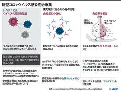 新型コロナウイルス感染症(COVID-19)に対して、現時点で研究段階にある主な戦略、潜在的治療薬についてまとめた図解。(c)AFP/John SAEKI