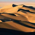 desert_nake