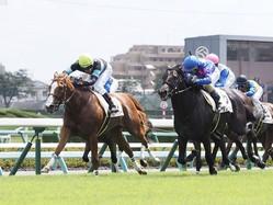 【新馬/中山5R】シャインガーネットが人気に応える!ゴール前しぶとく粘って勝利