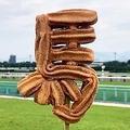 小倉競馬場に登場した「馬チュロス」