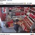 強盗に扮した警察官を前に微動だにしない犬(画像は『นุงลัคกี้ ไซบิเรียนเซินเจิ้น 2021年2月17日付Facebook「เมื่อมีโจรมาปล้นร้านทอง . . . . .」』のスクリーンショット)
