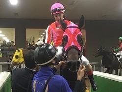 土曜東京6R新馬もルメール騎乗のアメリカンベイビーが5馬身差の圧勝