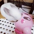 画像提供:なめ子(@matsumurako)さん