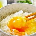 卵かけご飯 世界的には贅沢だった?海外では生の卵は危険