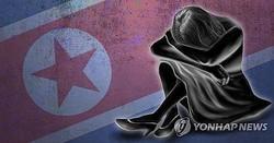 北朝鮮は米国が北朝鮮人権問題への対応を強めていることに反発した(コラージュ)=(聯合ニュース)