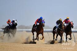 豪クイーンズランド州のバーズビルで、毎年開催されている競馬アウトバック・クイーンズランド(2018年8月31日撮影、資料写真)。(c)Saeed KHAN / AFP
