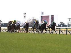 【クイーンC】ルメール 「ゲートの中で…」レース後ジョッキーコメント