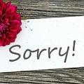 7日、上観新聞は、なぜ日本人はすぐに「すみません」と言うかについて分析した英BBCの記事について紹介した。資料写真。