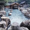「混浴」を求め、多くの外国人観光客が利用する露天風呂(「宝川温泉 汪泉閣」ホームページより)