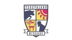 テゲバジャーロ宮崎、J3昇格が決定!建設中の新スタと「テゲバジャーロ」の由来はこれ