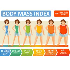 女性 体 パーセント 脂肪 30