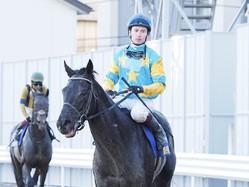 【川崎・川崎記念】マーフィー「走るごとに強くなる馬」デルマルーヴルは3着