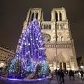 仏パリのノートルダム大聖堂の前に立つ巨大なクリスマスツリー(2017年12月2日撮影、資料写真)。(c)LUDOVIC MARIN / AFP