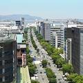 九州のなかでも人が多く集まる福岡だが...