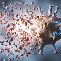 新型コロナから回復した人の免疫「変異株にも対応できる可能性」