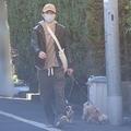 昨年12月、犬を散歩させる渡部