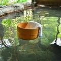 自然豊かな立地の温泉も多いですが、「ワニ」が出るとはどういうことでしょうか…?(shiryu01/stock.adobe.com)