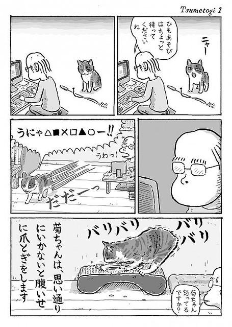 思い通りにいかないと腹いせに「激しい爪とぎ」をする愛猫と夫婦の漫画 ...