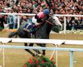 1993年、菊花賞を制したビワハヤヒデ