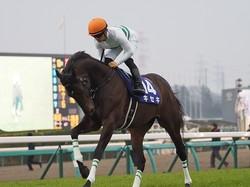 キセキ(2018有馬記念)