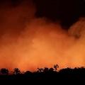 アマゾン火災が気候変動に影響を及ぼす可能性「臨界点」越えも