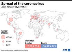 各国が発表した新型コロナウイルスによる公式死者数を示した図。(c)SIMON MALFATTO, SABRINA BLANCHARD / AFP