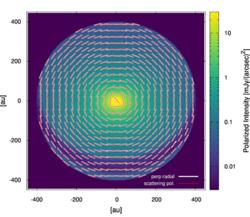 原始惑星系円盤の偏光パターンのシミュレーション結果 (東北大学の発表資料より)
