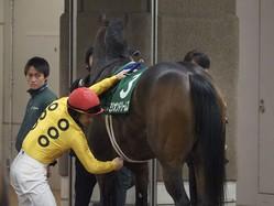 【クイーンC】ミリオンドリームズ8着!ルメール 「柔らかい馬場の方が…」