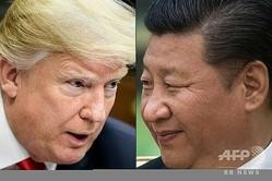 米国のドナルド・トランプ大統領(左)と中国の習近平国家主席(2020年5月14日作成)。(c)Brendan Smialowski and Fred DUFOUR / AFP