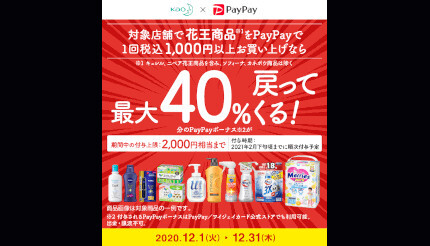 Paypay 花王 40