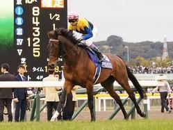 【ジャパンC】武豊「これしかないというレース」マカヒキは健闘の4着