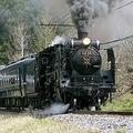 Large 181009 locotrain 01