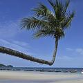 ビーチ。タイの島で(2020年8月21日撮影、資料写真)。(c)Romeo GACAD / AFP