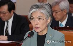 国会外交統一委員会で答弁する康氏=25日、ソウル(聯合ニュース)