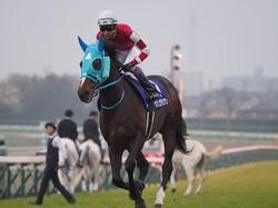 オジュウチョウサン(2018有馬記念)