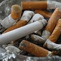 国際結核肺疾患連合がタバコの販売停止呼びかける「合法では」と疑問の声も
